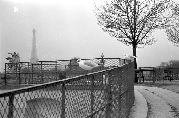 Paris-2006